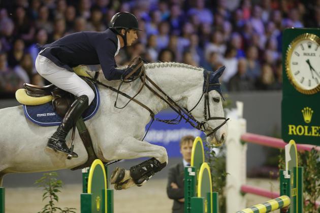 Il senso del cavallo la striglia - Avere un cavallo ...