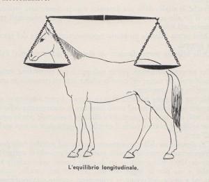 bilancia longitudinale 001