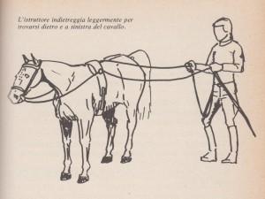 doppia longia (2)